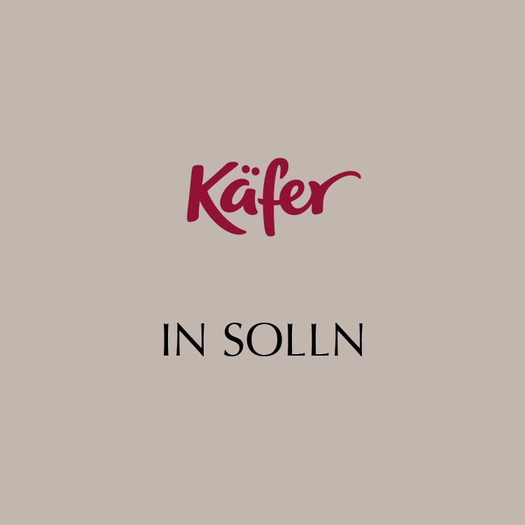 Käfer in Solln