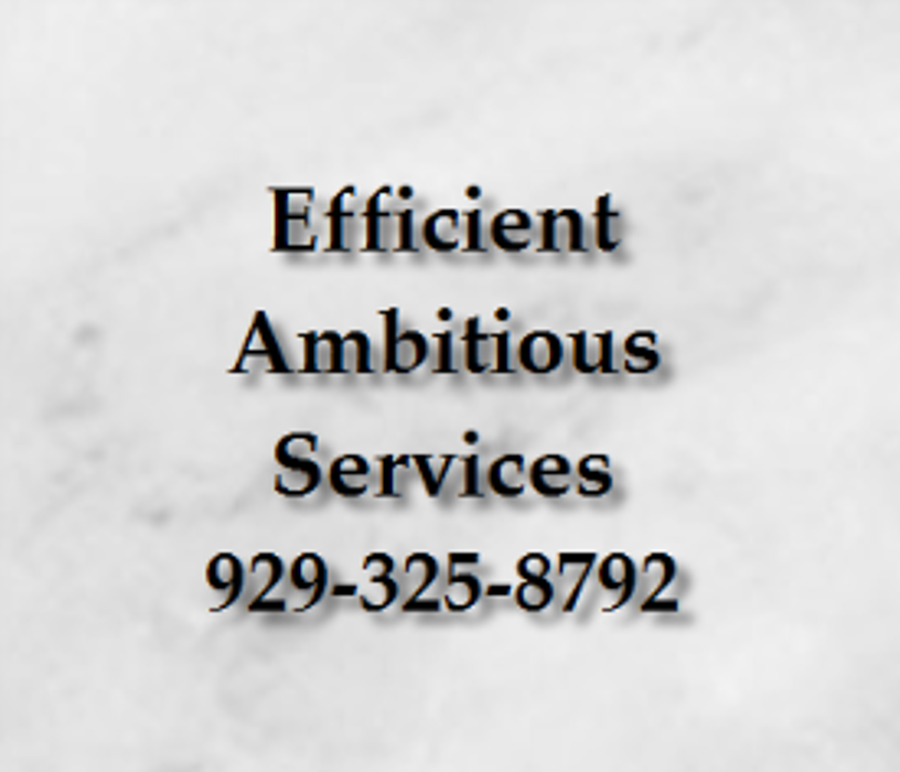 Efficient Ambitious Services - Brooklyn, NY