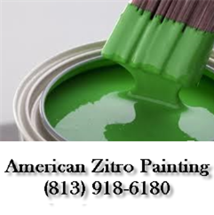 American Zitro Painting - Riverview, FL