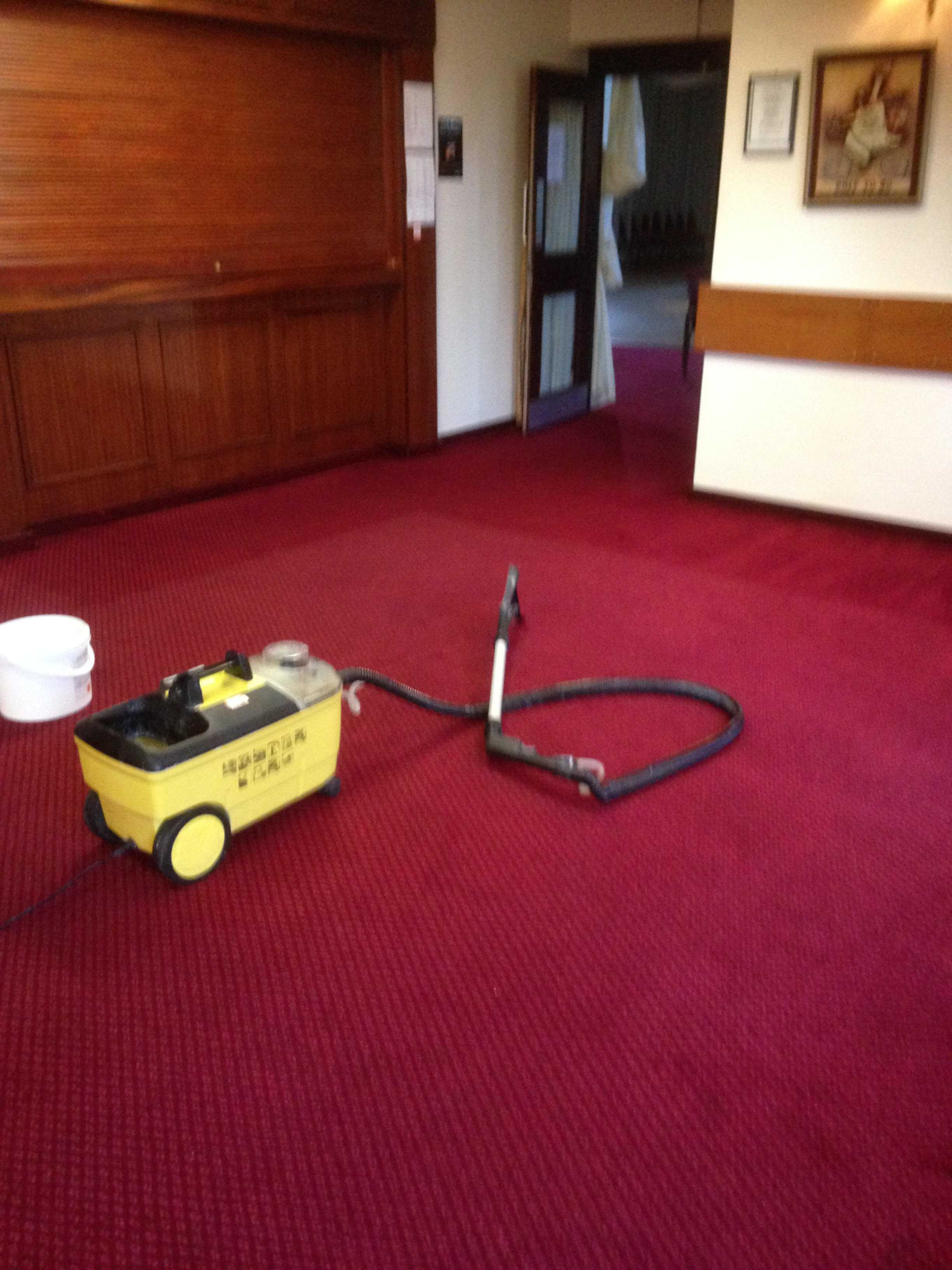 Steve Scott Carpet Cleaning