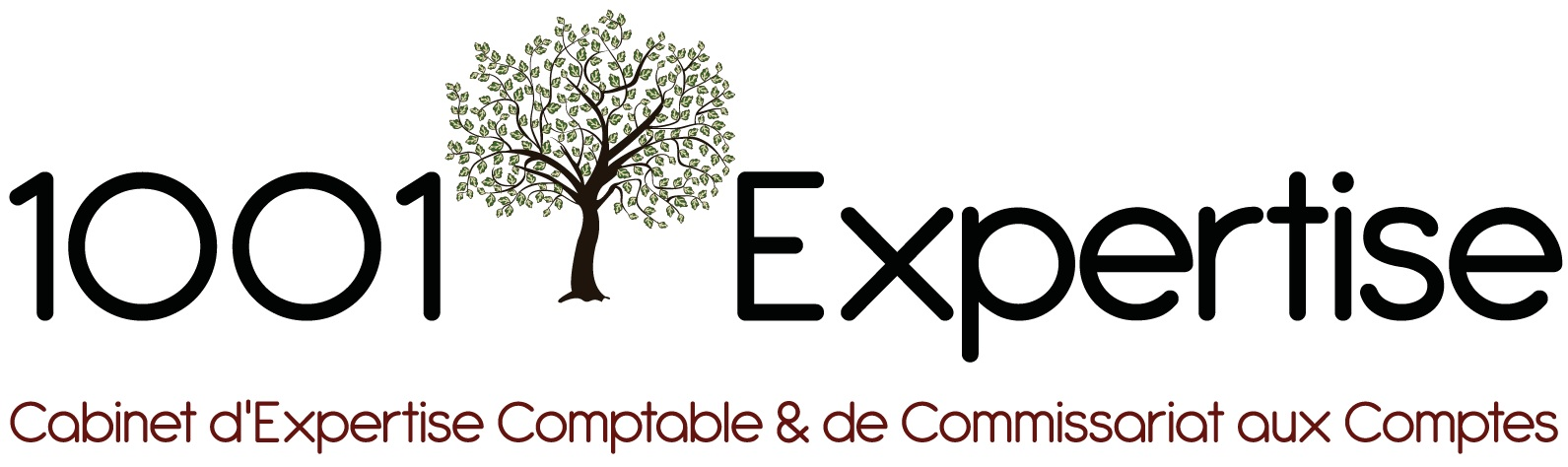 1001 EXPERTISE expert-comptable