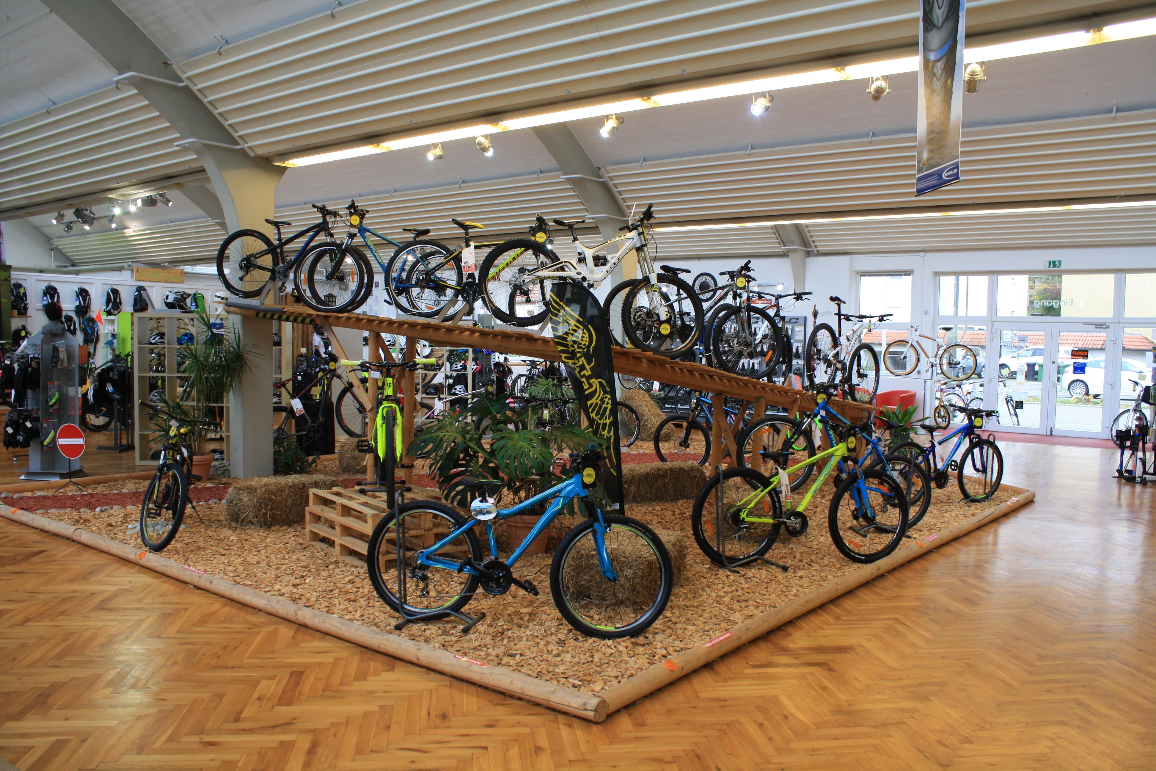 Bayer Radsport