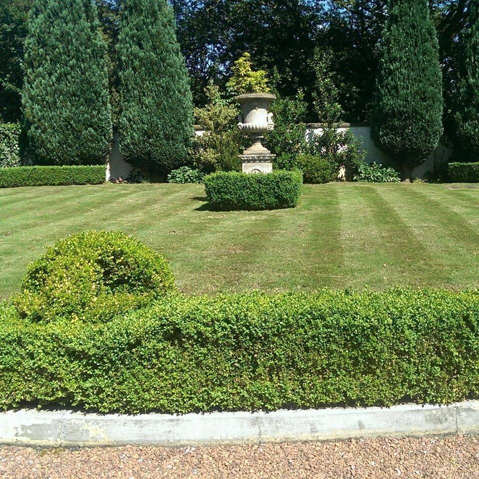 Evergreen Landscapes Manchester 07805 694795