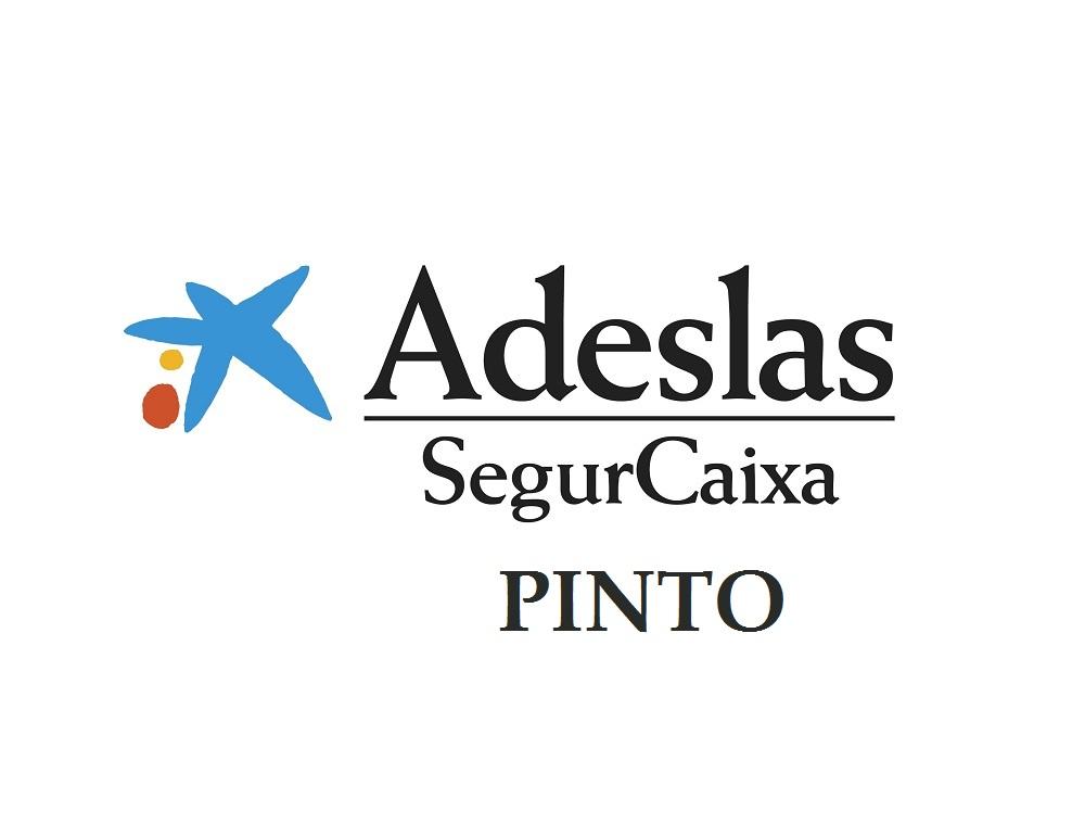 SegurCaixa Adeslas Pinto