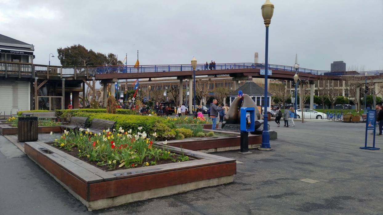 The Urban - San Francisco, CA