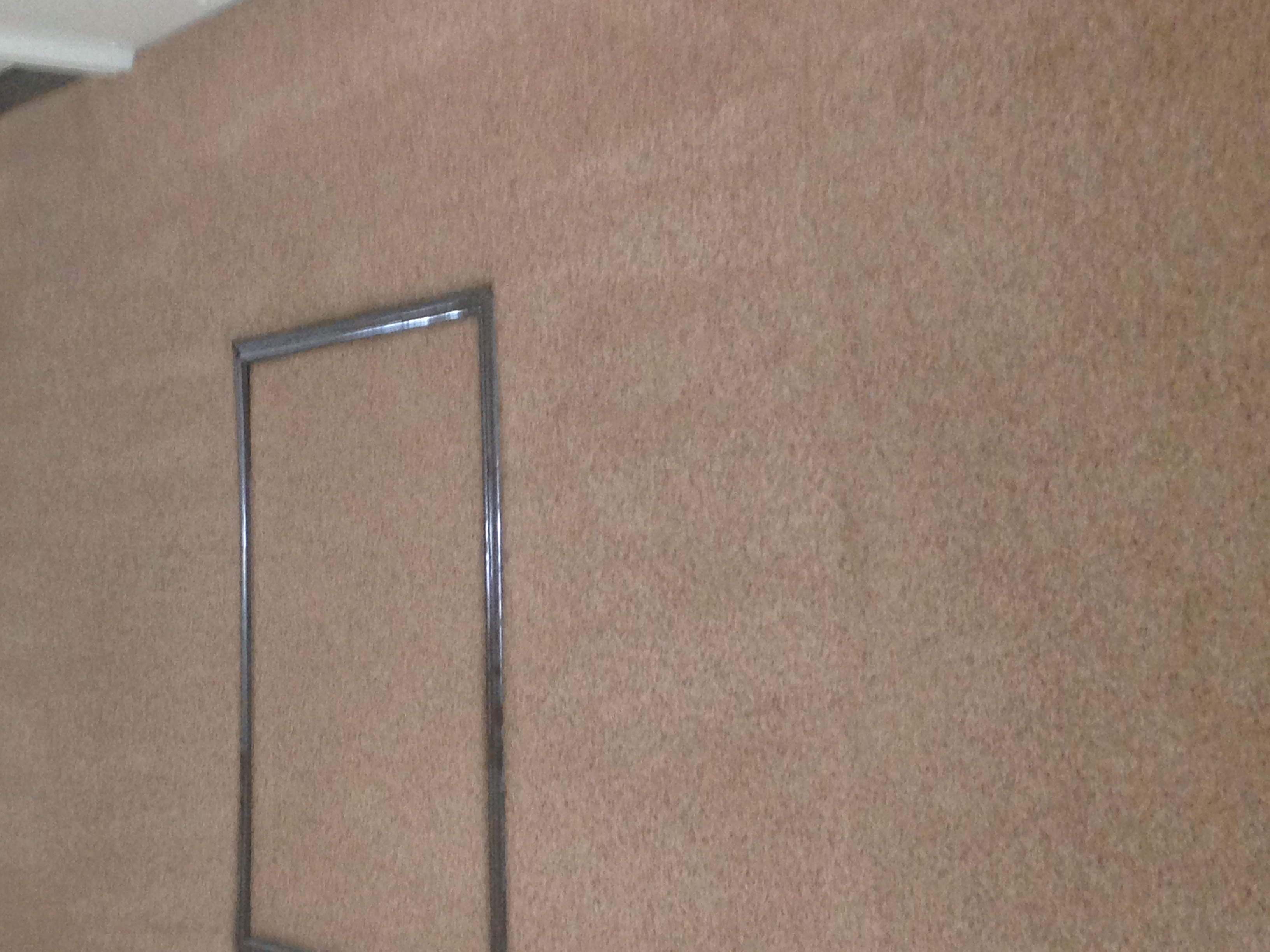 Ultimate Carpet & Upholstery Cleaning