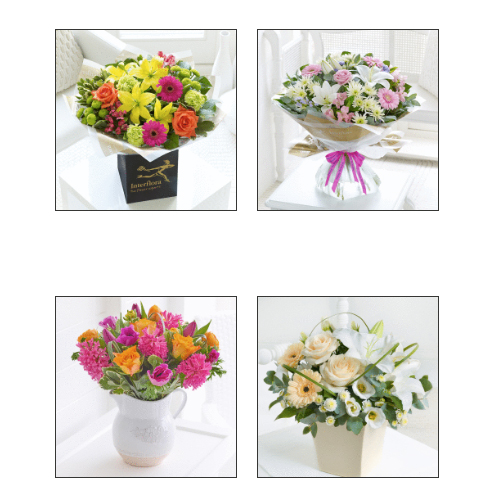 South Brent Flowers - Ivybridge, Devon PL21 9AE - 01752 894729   ShowMeLocal.com