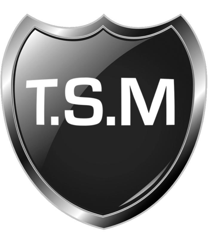 Bild zu T.S.M & VIP Service in Duisburg