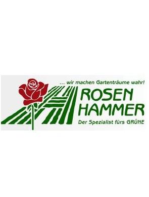 Rosen Hammer GbR - Bei der Schleuse
