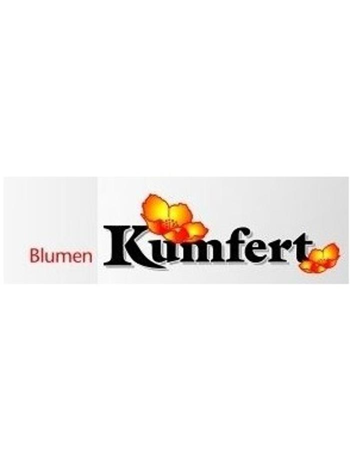 Bild zu Blumen Kumfert in Stuttgart