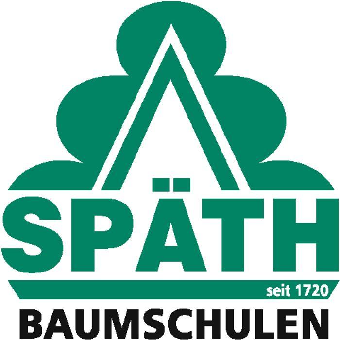 Bild zu Späth'sche Baumschulen Handel GmbH in Berlin