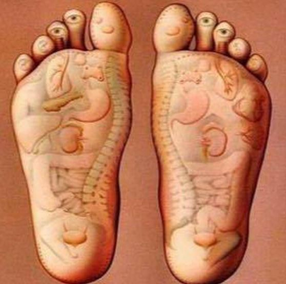 Enchanted Healing Therapies
