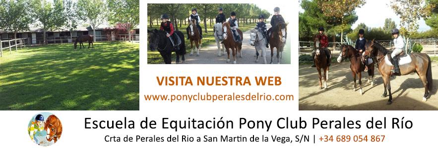 CENTRO DE EQUITACION Y PONYCLUB PERALES DEL RIO