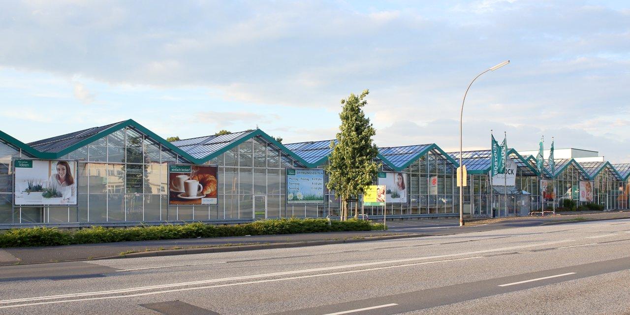 bellandris rostock wintergarten elmshorn deutschland. Black Bedroom Furniture Sets. Home Design Ideas