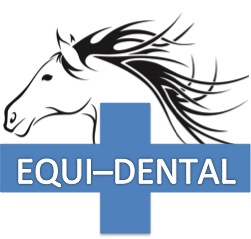Equi-Dental Drumoak 07834 197907