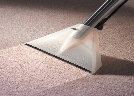 Alan Mountain Carpet Cleaning