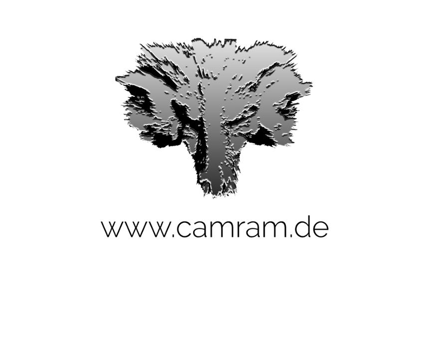 Bild zu Camram in Hamburg