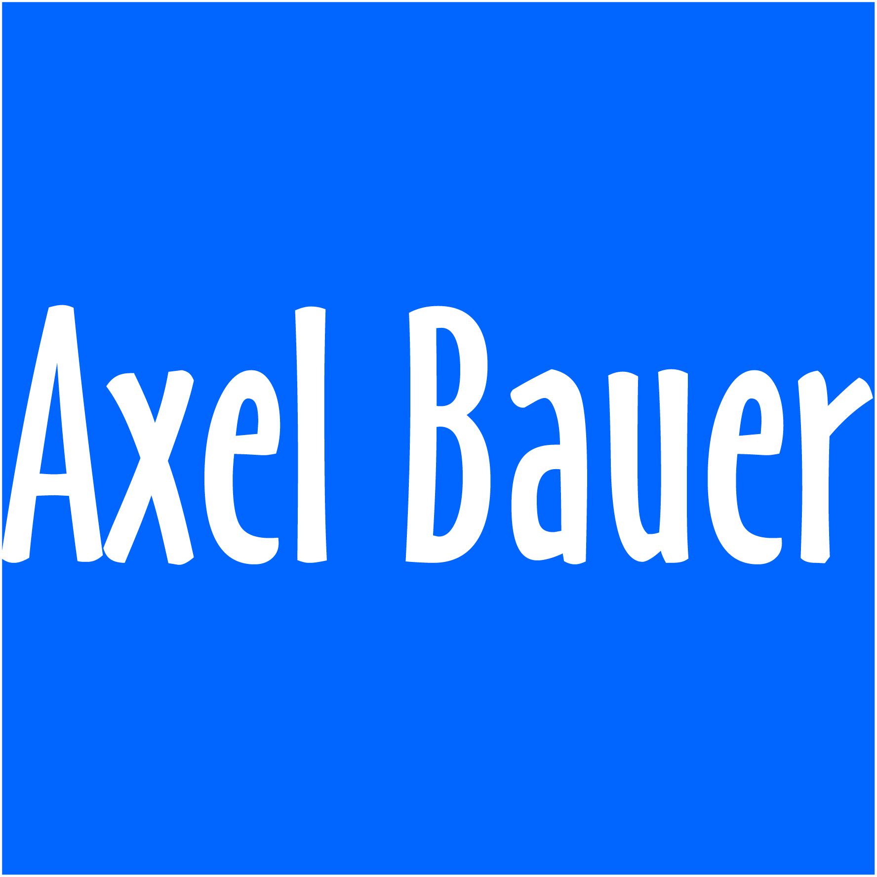 Axel Bauer Steinbodensanierung