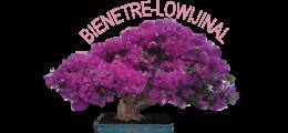 BienEtre-Lowijinal