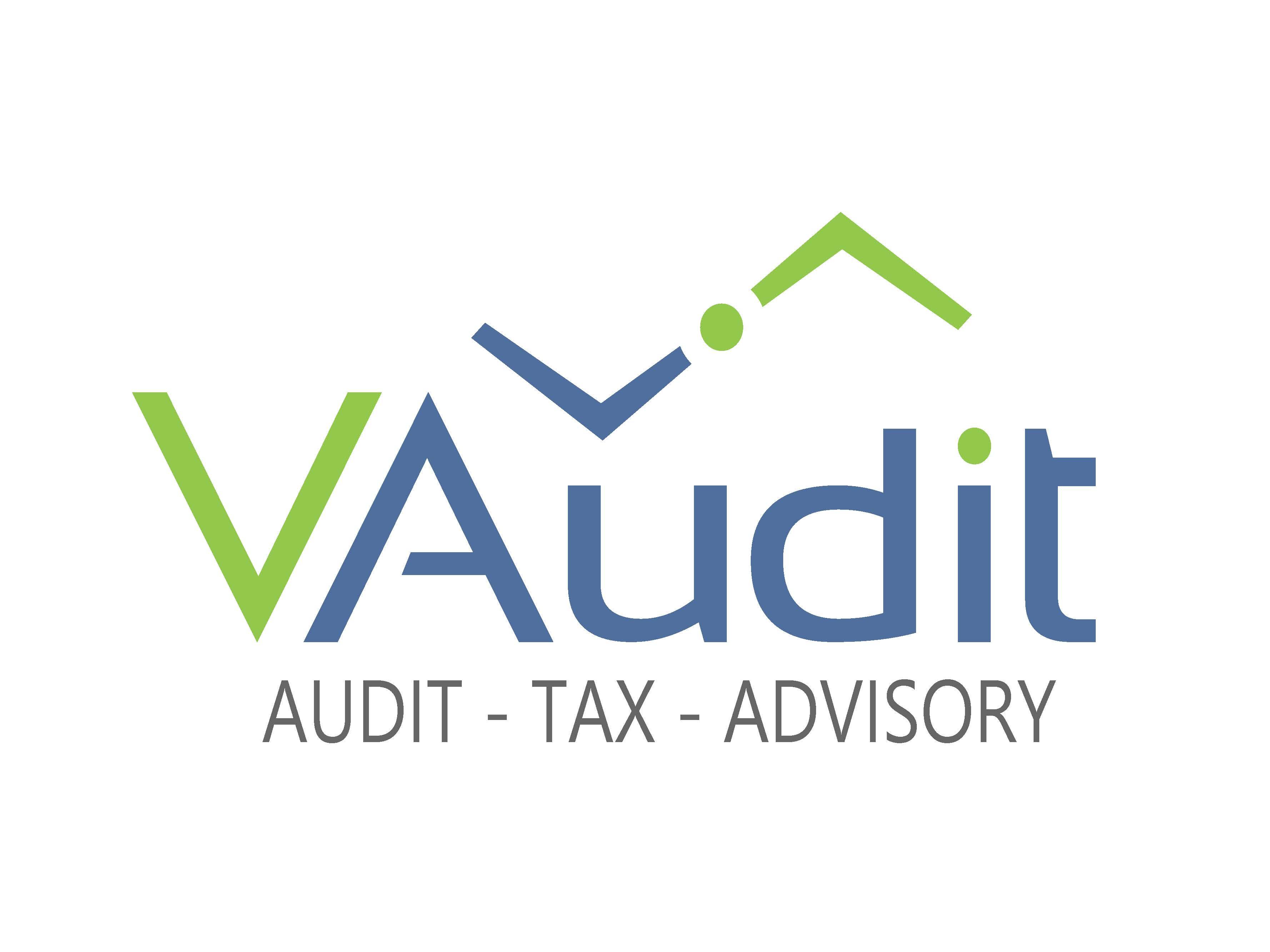 VAUDIT Auditores y Consultores