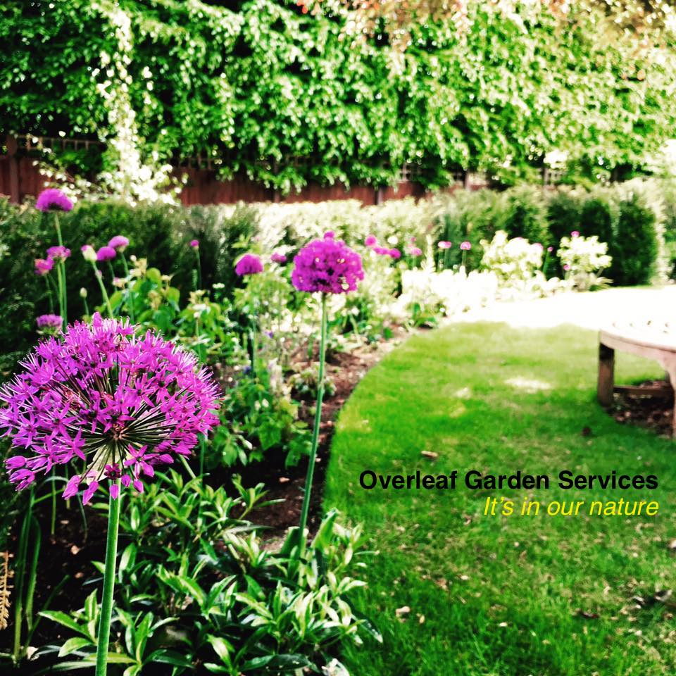 Overleaf Garden Services - London, London N13 6LE - 08001 075323 | ShowMeLocal.com