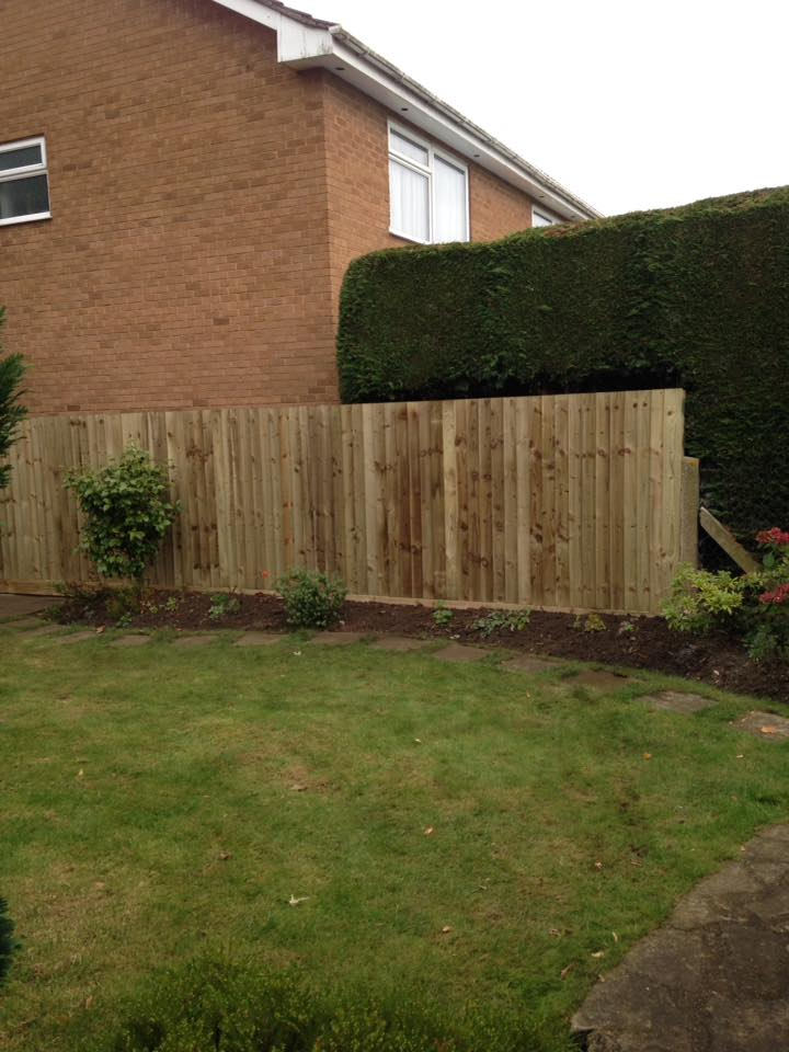 Rugby Fencing