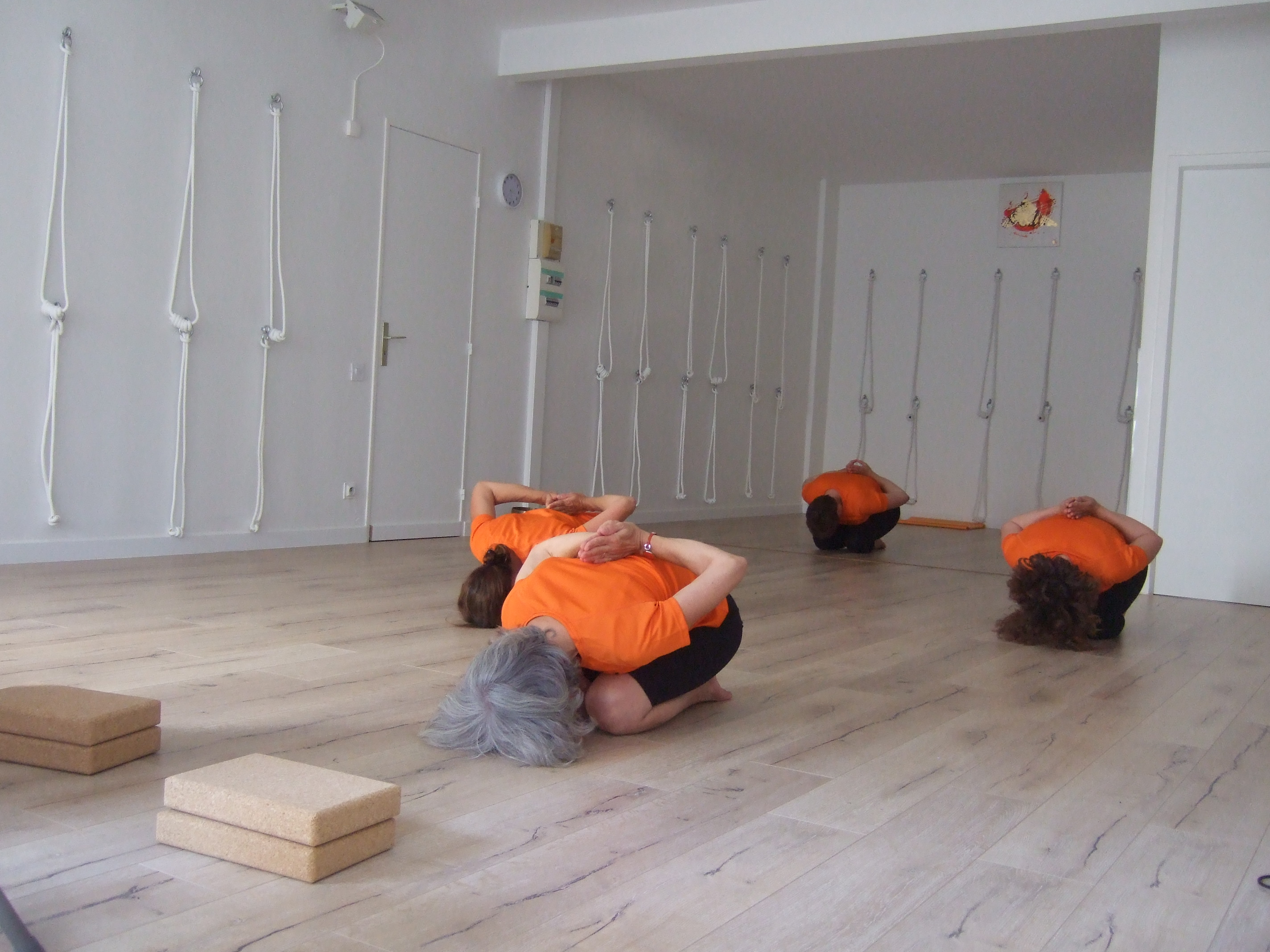 Studio de YOGA IYENGAR de Pau