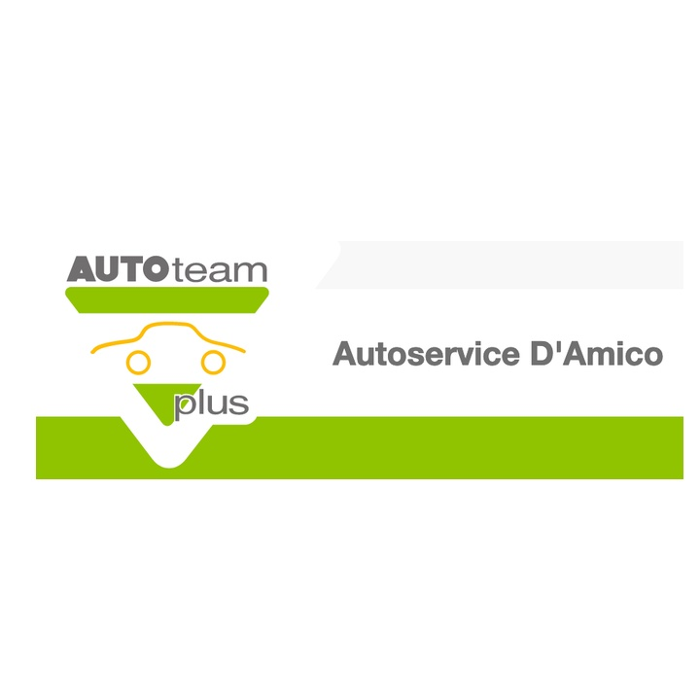 Bild zu Auto-Service D'Amico Inh. Scharbel Abdel Ahad in Florstadt