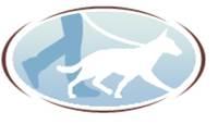 Balades et éducation canines en Beaujolais dressage animal