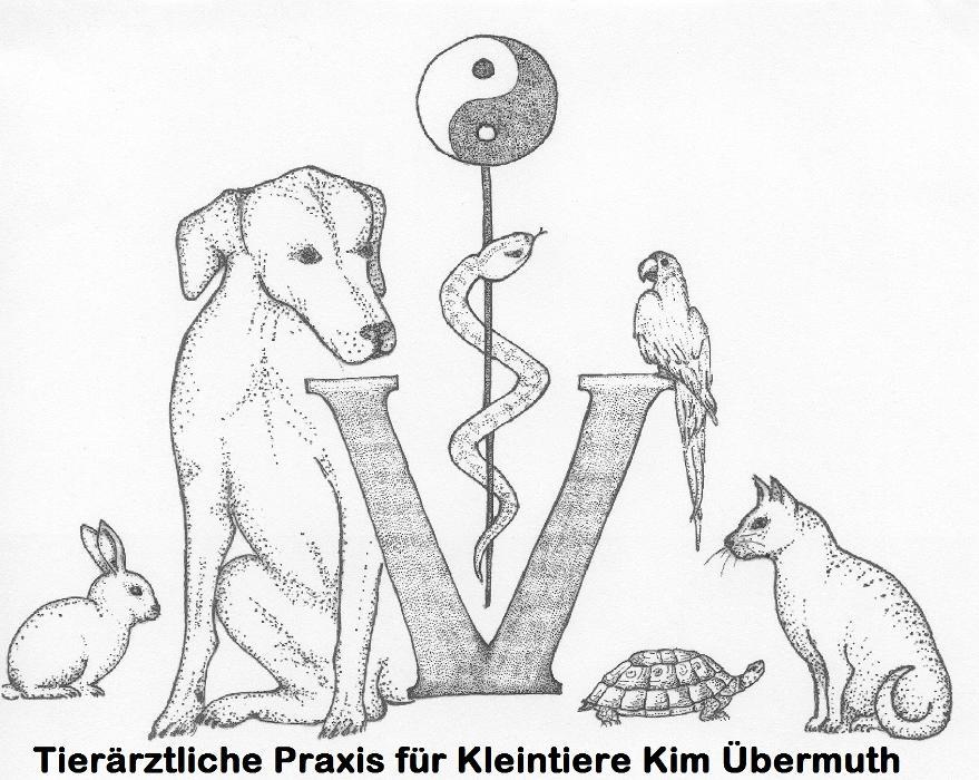Bild zu Tierärztliche Praxis für Kleintiere Kim Übermuth in Wildeshausen