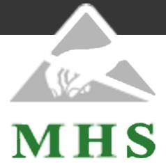 MHS Leipzig