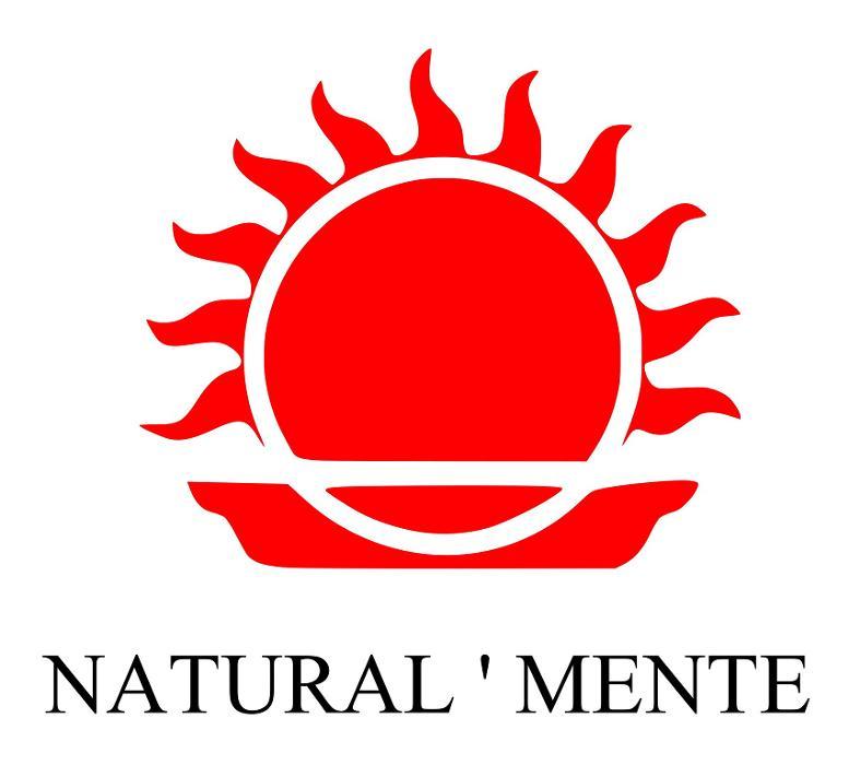 Bild zu Natural'Mente - Makrobiotik Gastronomie GmbH in Berlin