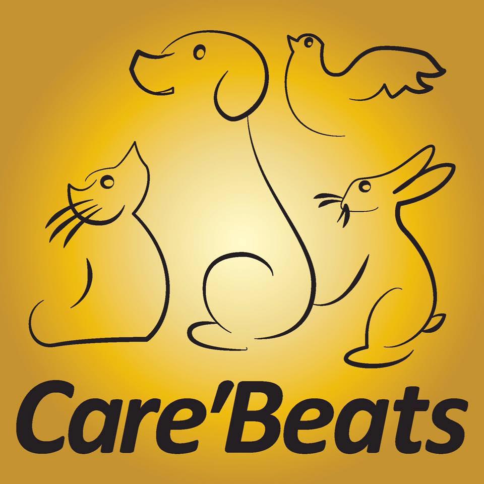 Animalerie Care'Beats dressage animal