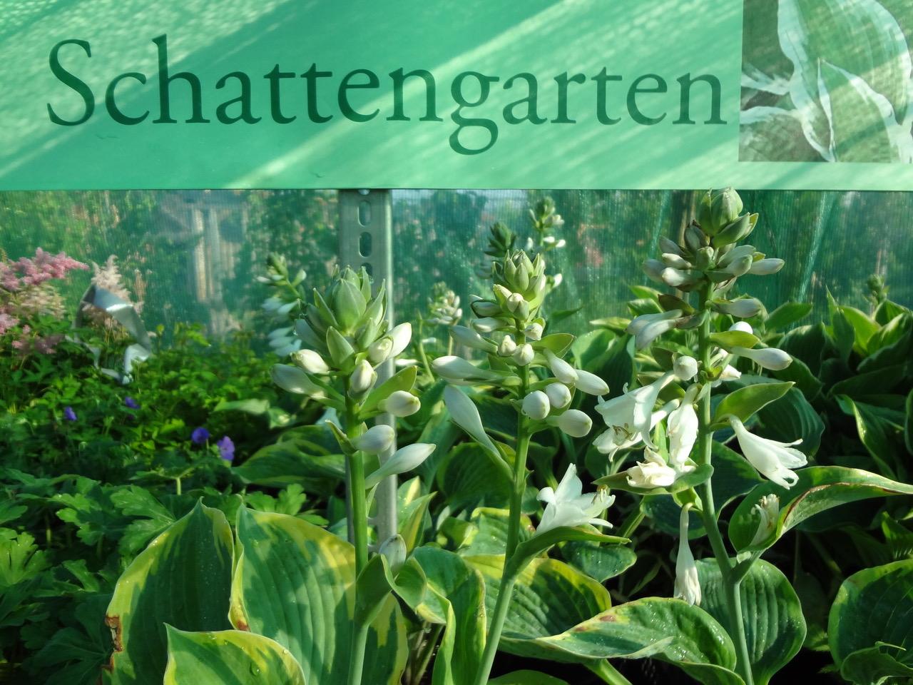 Garten Dobretzberger