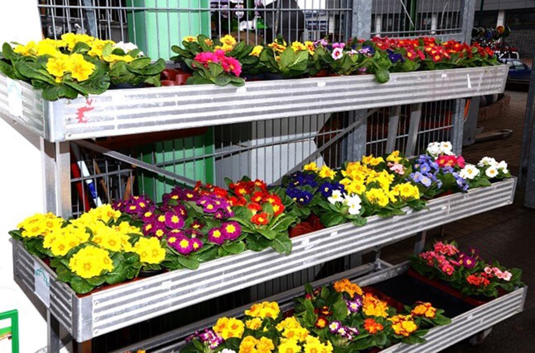 Agravis raiffeisen markt gmbh bodenwerder webcam