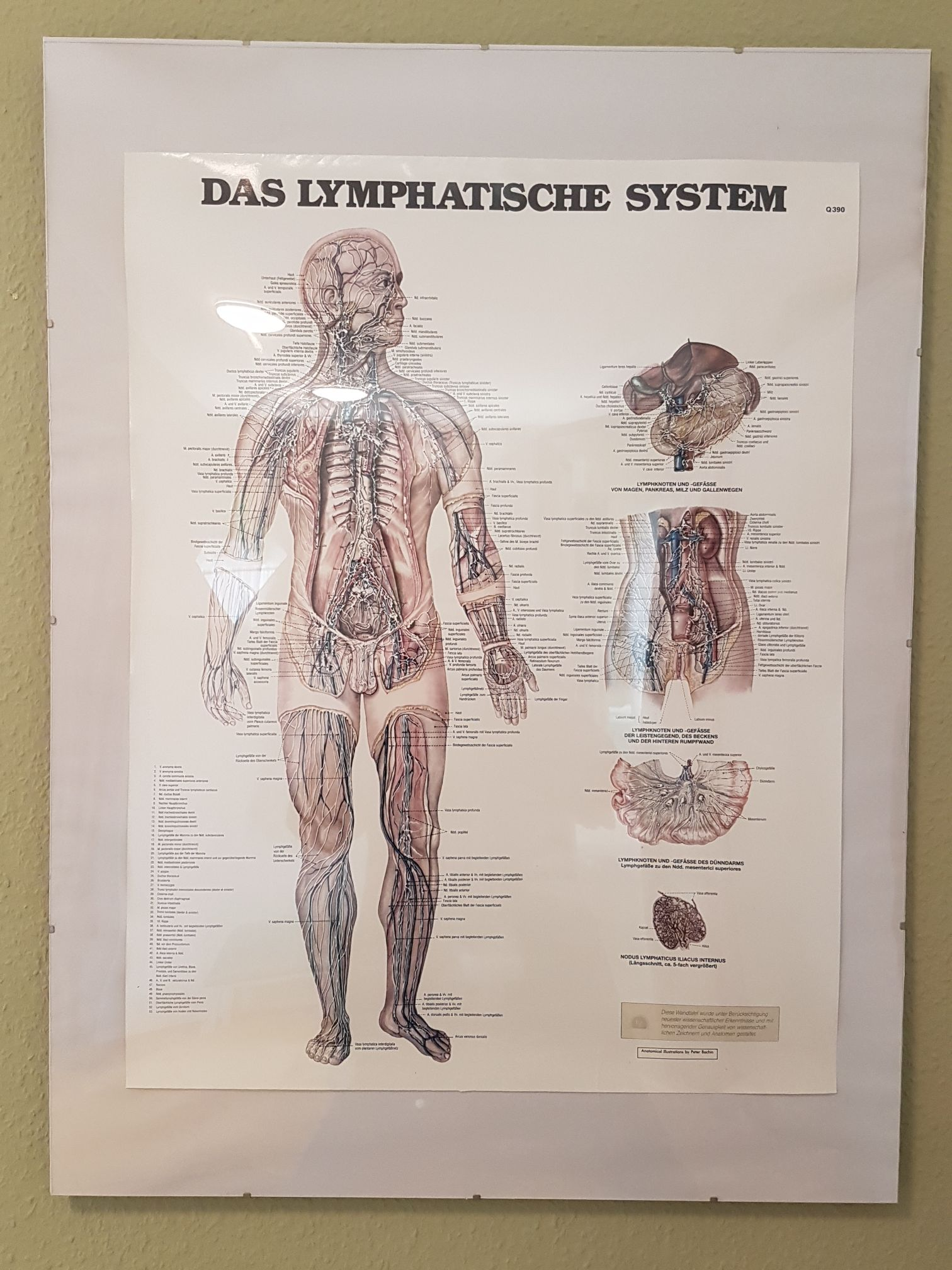 Physiotherapie Uta Heyne-Schmiedel in Leipzig - Branchenbuch Deutschland