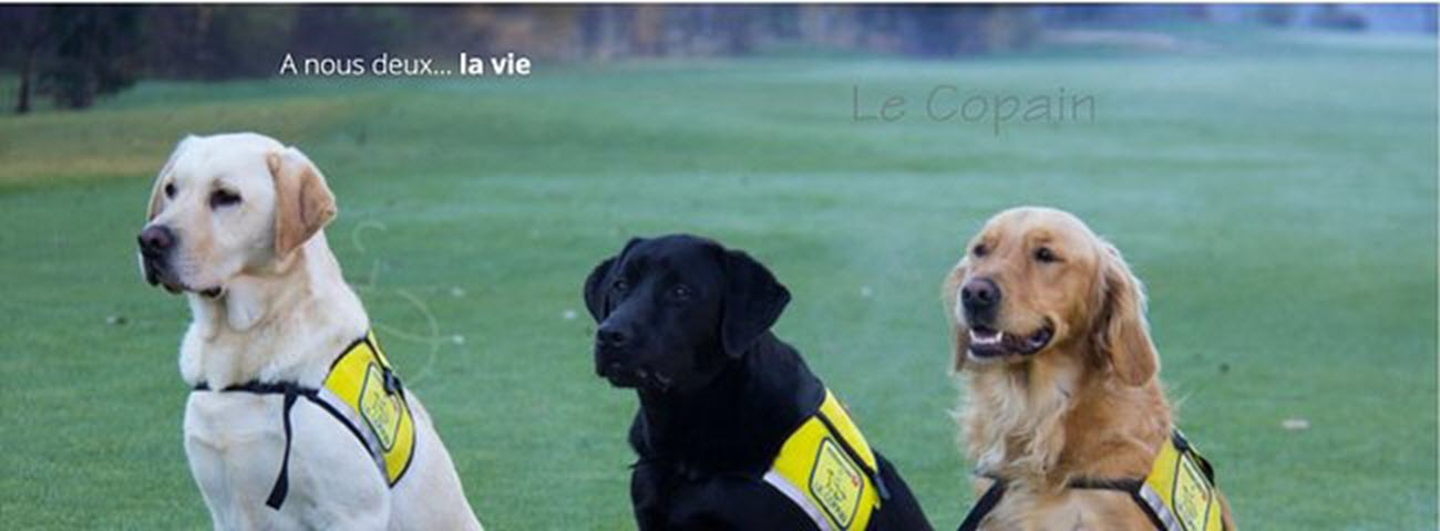Suisse d'éducation de chiens d'assistance pour personnes handicapées et épileptiques LE COPAIN