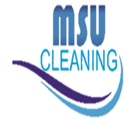 MSUcleaning