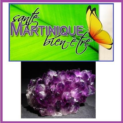 Martinique Santé Bien- Etre