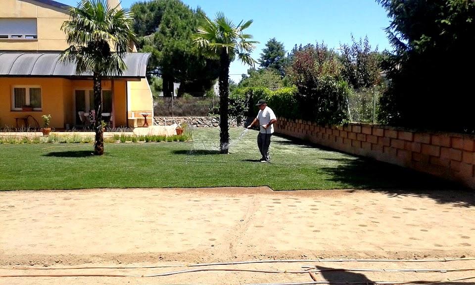 Jardineria Sierra de Guadarrama-Madrid