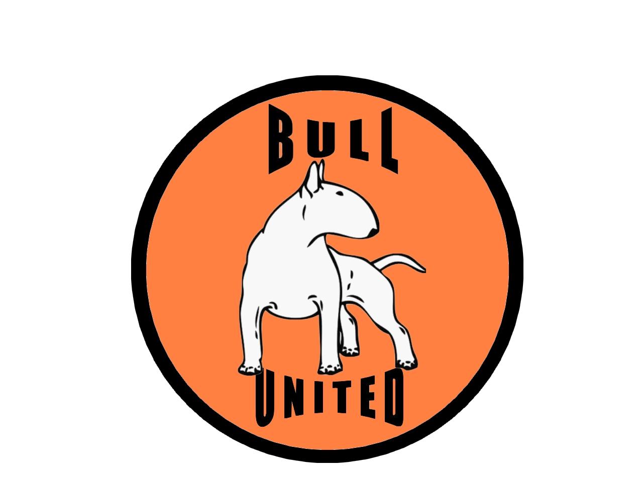Bull United