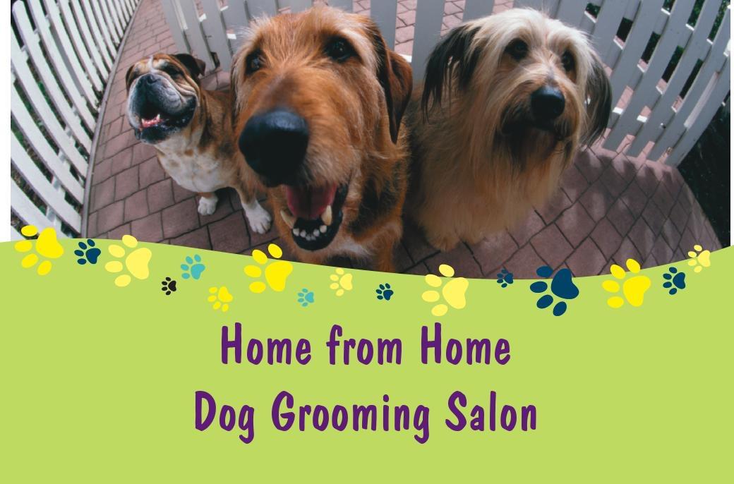 Dog Grooming Romford