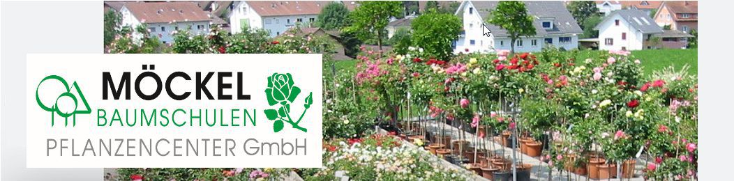 Möckel Baumschulen Pflanzencenter GmbH
