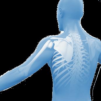 Physiotherapie Brandschenke