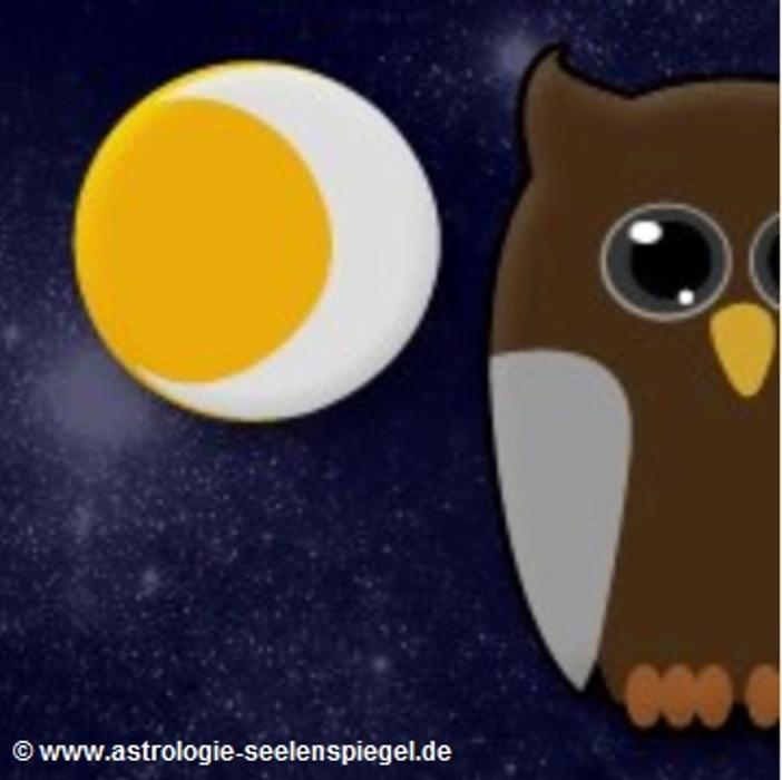 Bild zu SEELENSPIEGEL - Horst Wagenblaß Psychologische Astrologie in Wiesloch