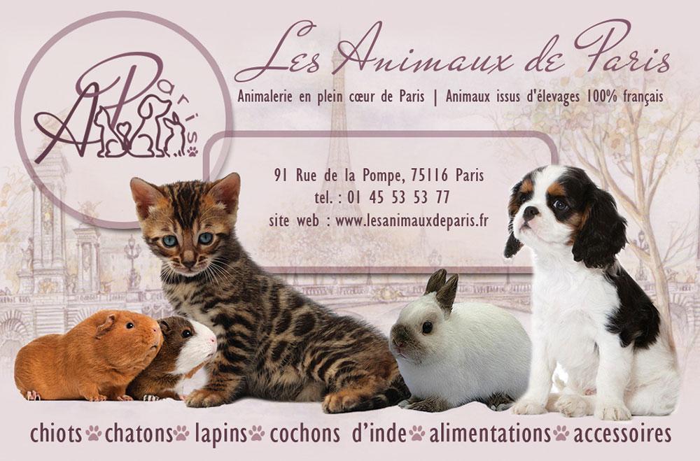 Les Animaux de Paris