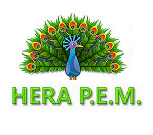 HERA - P.E.M