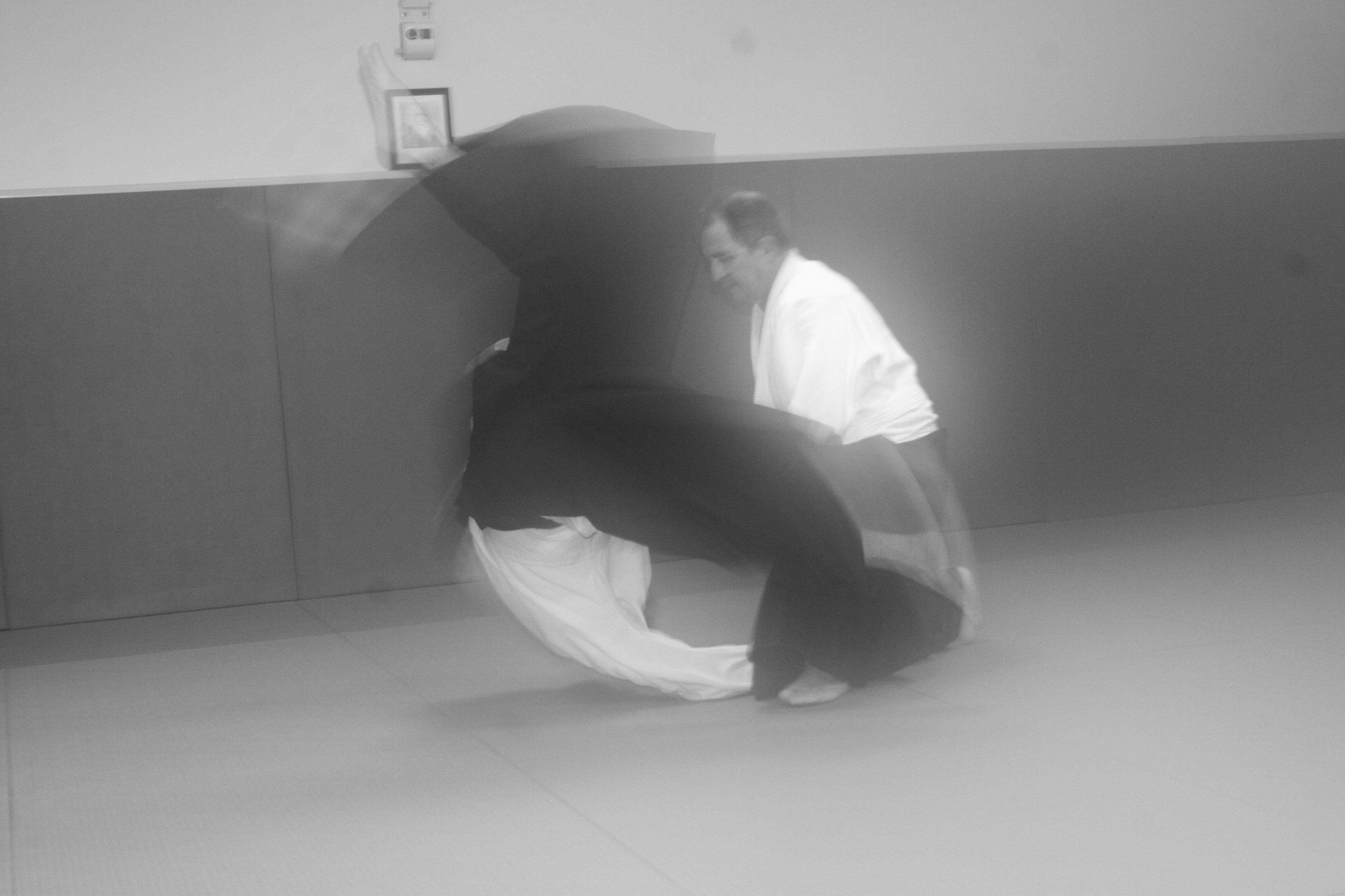 ADAP - Association pour le developpement de l'aikido en provence