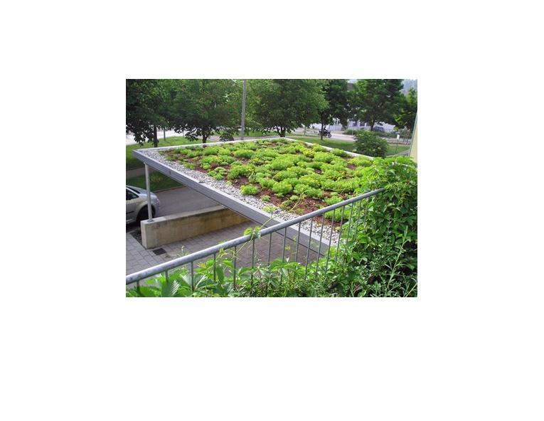 Blumen und Gärten Gerber GmbH