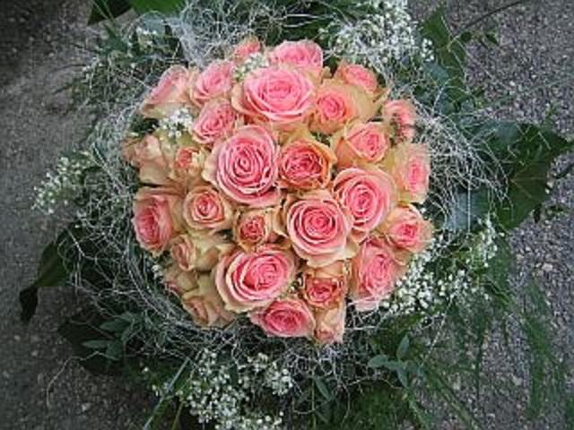 Blumen Bergmoser